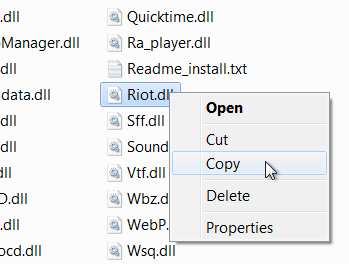 Locate and copy Riot.dll plugin